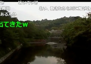 47横山緑