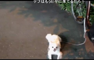 20150720-29hashimoto