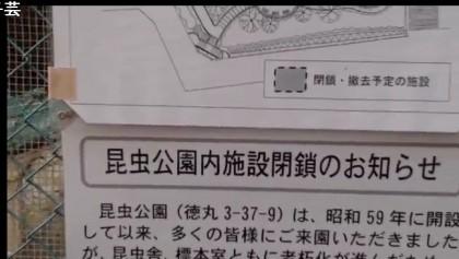 20160208-29hashimoto
