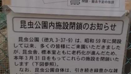 20160208-30hashimoto